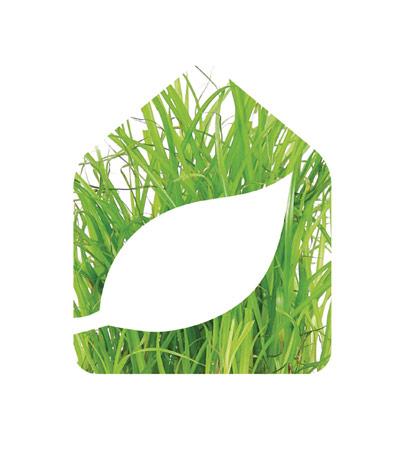 logo Xyland ossature bois, version herbe